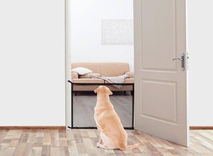 Afbeelding van Deluxa Pets Huisdierenrek Geschikt Voor Deuren of Trappen
