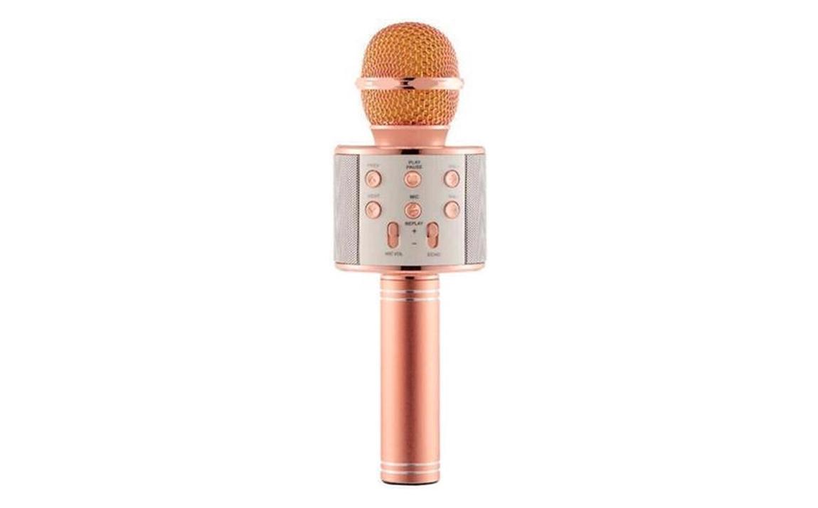 Karaoke Microfoon - Roze