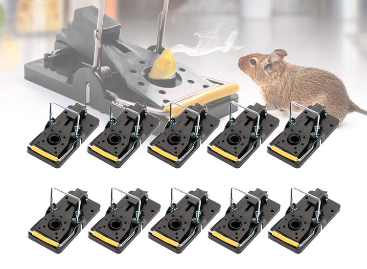 10-pack Muizenvallen - Effectief en Pijnloos